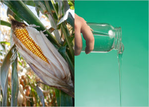 High Purity Halal High Fructose Corn Syrup F55 pictures & photos
