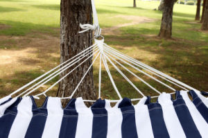Single Person Polyester Fringe Hammock pictures & photos