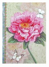 Office & School Supplies Wholesale Custom Notebook Exercise Book pictures & photos