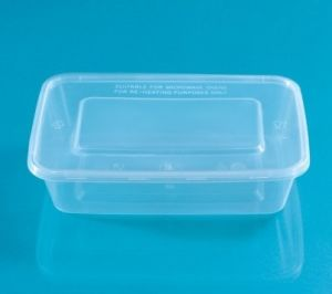 Disposable Rectangle Food Storage Container