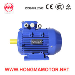 15/20kw Induction Double Speed Motor (200L2-8P/6P-15/20KW) pictures & photos