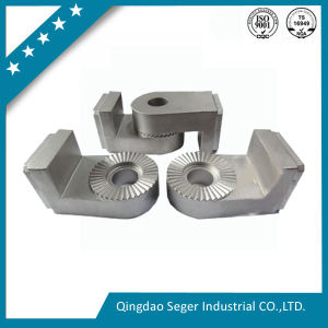 Precision Metal Casting Parts (seger-36) pictures & photos