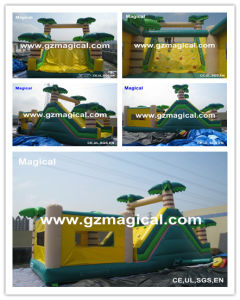 Inflatable Bouncer (MIC-611) pictures & photos