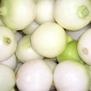 Excellent Peeled Onion for Export pictures & photos