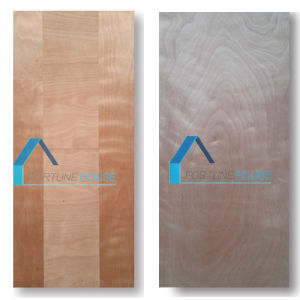 Factory Price Moulded/Laminate Plywood Door Skin with Real Sapeli pictures & photos