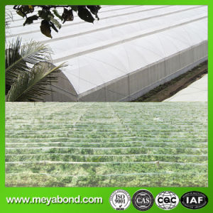 Greenhouse Netting in South America Anti Aphid Nets pictures & photos