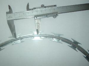 Low Price Razor Wire, Razor Barbed Wire, Razor Wire Fencing pictures & photos