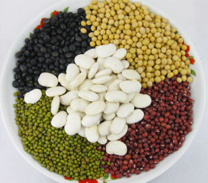 High Quality Dried Bean (red/yellow/green/white/black) in China pictures & photos