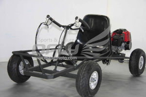 Hot Selling Racing Go Carts pictures & photos