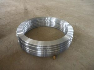 Forging/Forged Ring (304L, 1.4306, UNS S30403, X2CrNi19-11)