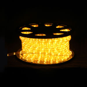 High Quality Rope Light LED Round 2 Wires pictures & photos