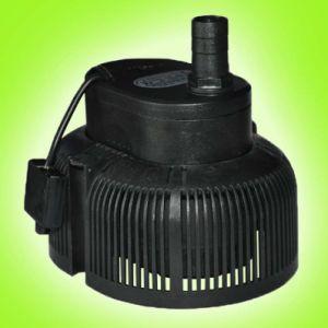 Ultra-Low Water Pump (DB-D777)