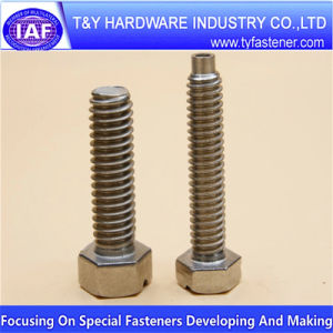 Competitve Price Non-Standard Screw Special Screw Stainless Steel Screw pictures & photos
