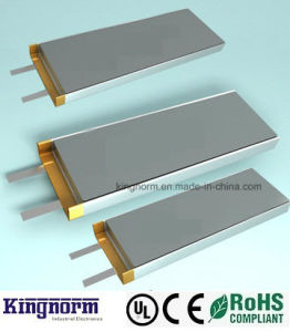 Customized Lithium Polymer Battery with PCB BMS pictures & photos