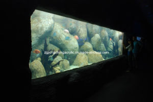 Acrylic Stone Tank pictures & photos