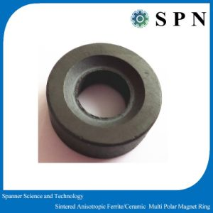 Ferrite Permanent Magnetic Multipole Rings OEM pictures & photos