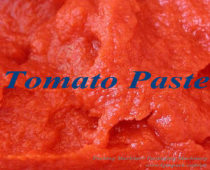 Tomato Paste / Ketchup / Facial Cream / Lotion Packing Machine pictures & photos