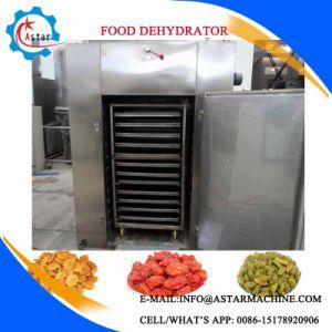Pumpkin/Garlic/Mushroon/Grape/Plum Vegetable Dryer Machine for Sale pictures & photos