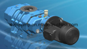 Industrial Vacuum Heat Treatment Roots Boosters (ZJ-75DV) pictures & photos