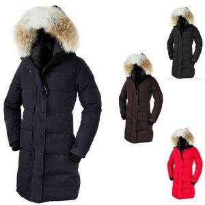 Long Length Thicken Wind Proof Women Slim Winter Down Coat pictures & photos