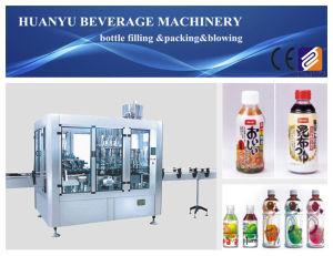 Juice Filling Machine Hot Filler pictures & photos