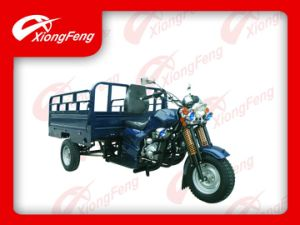 New Design Cargo Tricycle, Three Wheel Motorcycle pictures & photos