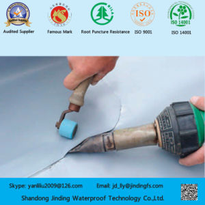 PVC Membrane Used on Under Ground Structures pictures & photos