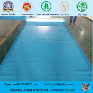 PVC Membrane Used for Under Ground Structures pictures & photos