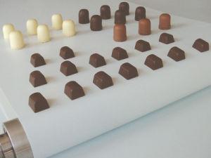 Food Grade PVC PU Conveyor Belt FDA Approving Conveyor Belting pictures & photos