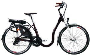 Electrc Bicycle (LN28C05) PHONIX