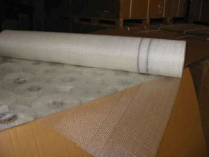 E-Type Fiberglass Raw Materials Mesh pictures & photos