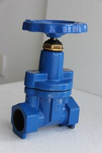 Screwed Ends Resilient Gate Valve, Angle F/M pictures & photos
