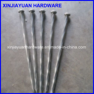 8 Inch Bright Spike Nail 3/8′′ Diameter Factory Price pictures & photos