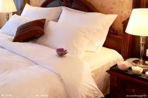 100% Cotton Hotel/Home Bedding Sets From China pictures & photos