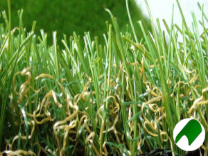 Synthetic/Artificial Turf with MU
