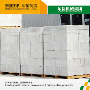 AAC Blocks-. Autoclave Aerated Concrete Block Dongyue Machinery Group pictures & photos
