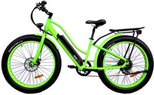 Inner Battery Fat Tire City Electric Bike E Bike pictures & photos