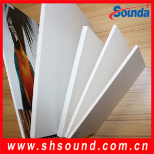 Sounda High Quality PVC Foam Board (SD-PFF09) pictures & photos