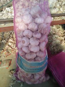 10kg Mesh Bag Fresh Garlic 5.0cm with Better Quality pictures & photos