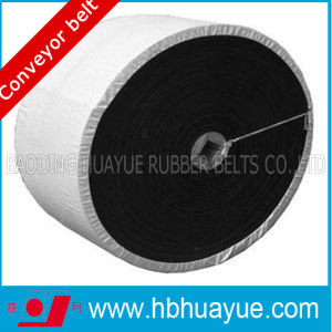 Plastic Conveyor Belt, Black Belt for Conveyors pictures & photos