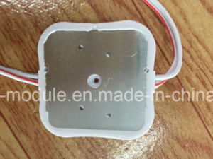 4 LEDs Injection LED Module for Billboard Light pictures & photos