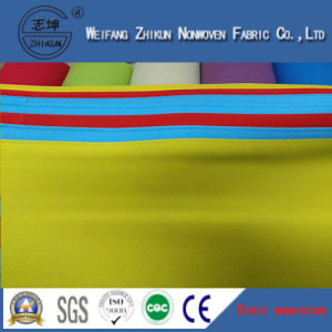 PP Color Nonwoven Fabric for Shopping Bags (100g-200g) pictures & photos