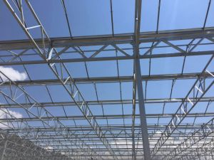 Multi Span Venlo Type Polycarbonate Sheet Greenhouse with Steel Structure pictures & photos