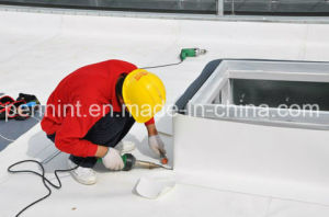 Plastic Waterproof Materials Tpo Flat Roofing Membrane pictures & photos