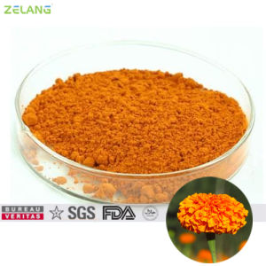 Tagetes Extract 20% Lutein Powder for Food Supplement pictures & photos