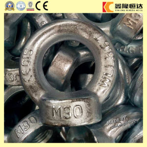 Stock DIN582 Stainless Steel Drop Forged Ring Nuts pictures & photos