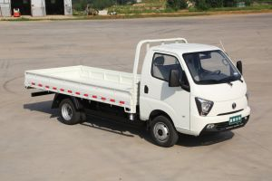 Chinese Diesel Waw Cargo 2WD New Truck for Sale pictures & photos