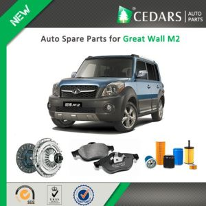 Chinese Auto Spare Parts for Great Wall M2 pictures & photos