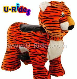 Animal Tiger ride walking animal pictures & photos