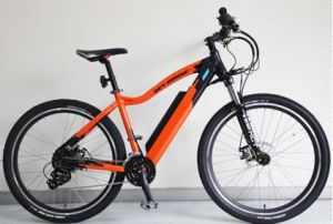 36V / 10.4ah Lithium Battery Al Alloy Electric Bicycle 250W (BN2702) pictures & photos